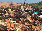 """This would make excellent bathtub gin!"" - Russians prowl food destruction sites, pick remains of fruits. PHOTOS"